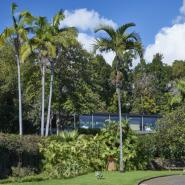 Quinta da Casa Branca 16, Funchal Hotel, ARTEH