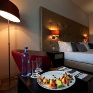 Douro Royal Valley Hotel & SPA 16, Baião - Ribadouro Hotel, ARTEH
