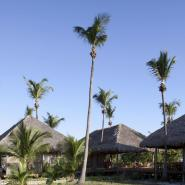Pousada Rancho do Peixe 14, Jericoacoara - Praia do Preá Hotel, ARTEH